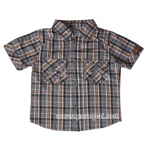 Риза сиво райе